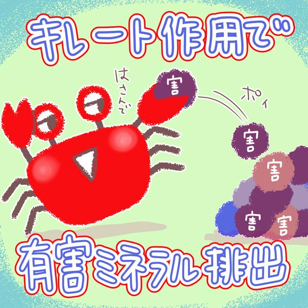 スタップ 細胞 と は Stap(スタップ)細胞の真実とは!? かずバズ/ブログ
